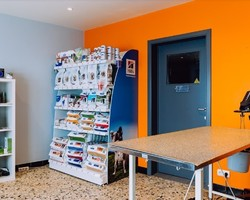 Vétérinaire Fabienne Bedet - Cabinet